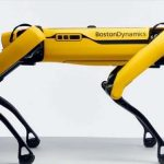 The robotic dog came on the market; its cost and features